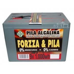 PASTOR - PILA FORZA 9V, 1000W/HORA ALCALINA