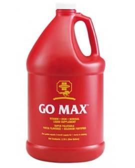 GO MAX 3,8 L.