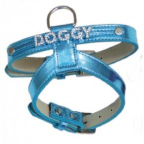Collar Brightdoggy azul-20 mm x 36/48 cm