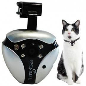 CAT VIDEOCAM
