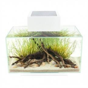 FLUVAL EDGE  23 lts 21 Led Blanco