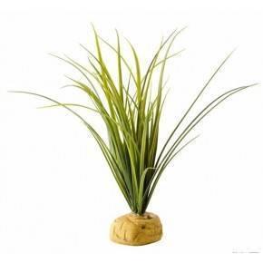 EXO TERRA TURTLE GRASS PLANTA