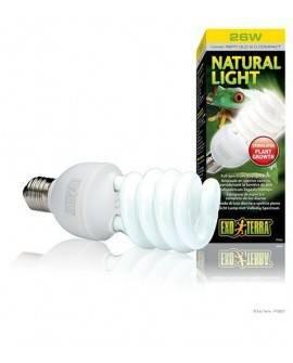 EXO TERRA NATURAL LIGHT COMPACTO 26 W (2.0)