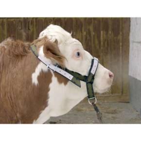 Cabezada para vacas, en Trevira-Refuerzos de cuero,
