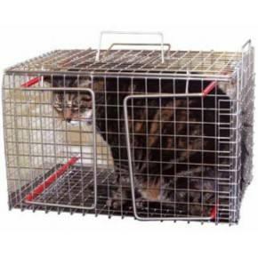 Jaula de contención de gatos inoxidable.