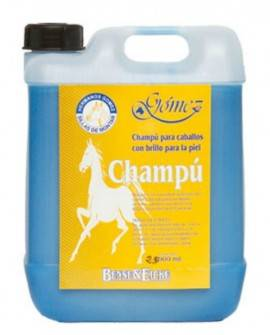 CHAMPU B & E          2,5 L