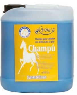 CHAMPU B&E          5 L