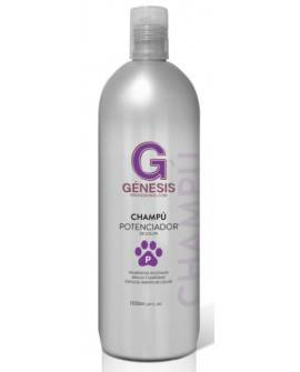 CHAMPÚ GENESIS POTENCIADOR DEL COLOR 1000 ML