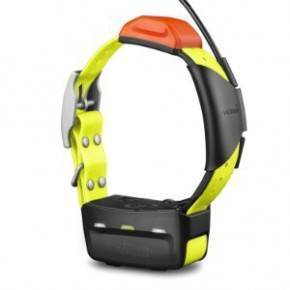 COLLAR GARMIN Alpha® 100 & T 5